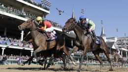 Breeders Cup Horse Racing