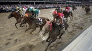 HORSE RACING BETTING SYSTEMS – BEGINNERS GUIDE