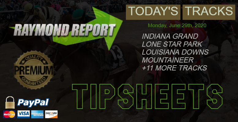 horse racing tipsheet