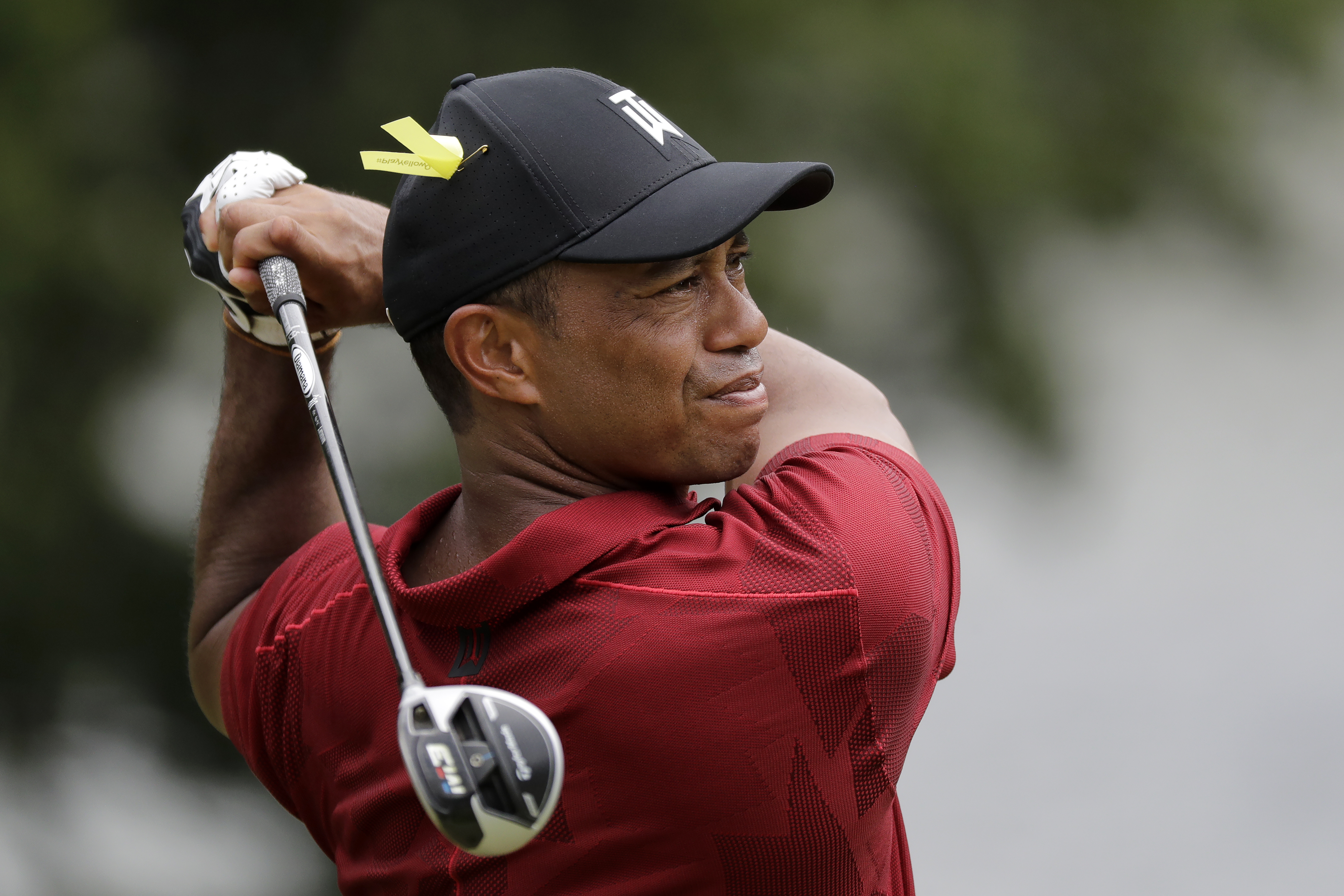 Tiger Woods Odds